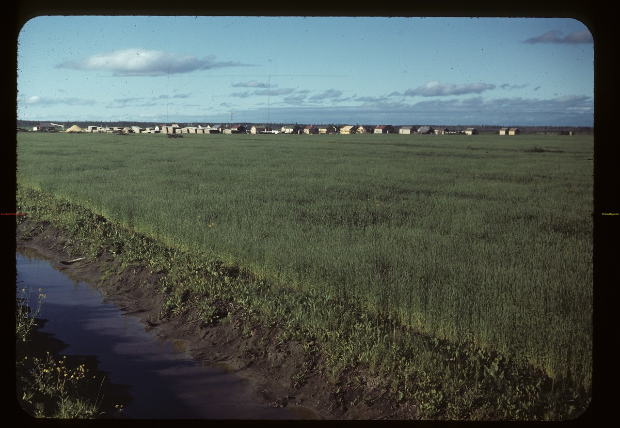 Co-op farm's construction camp. Carrot River 07/18/1949