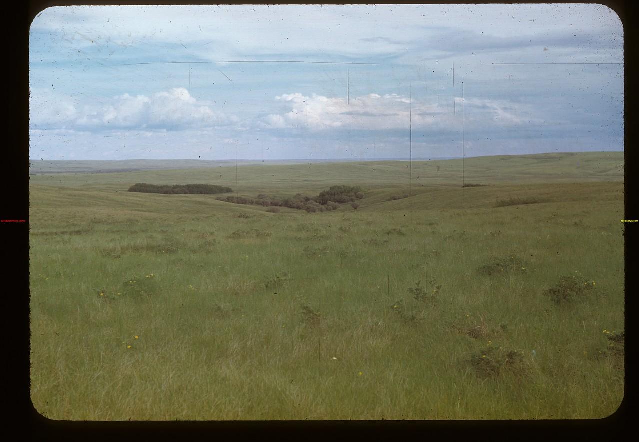 Sask. prairie - Cypress Hills - Fleming ranch. Maple Creek 06/26/1948