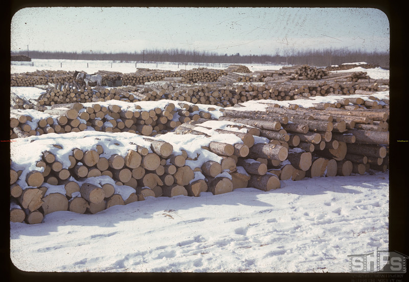 Soderberg's mill yard [stacks of logs].  Birch Lake Siding. 03/20/1941