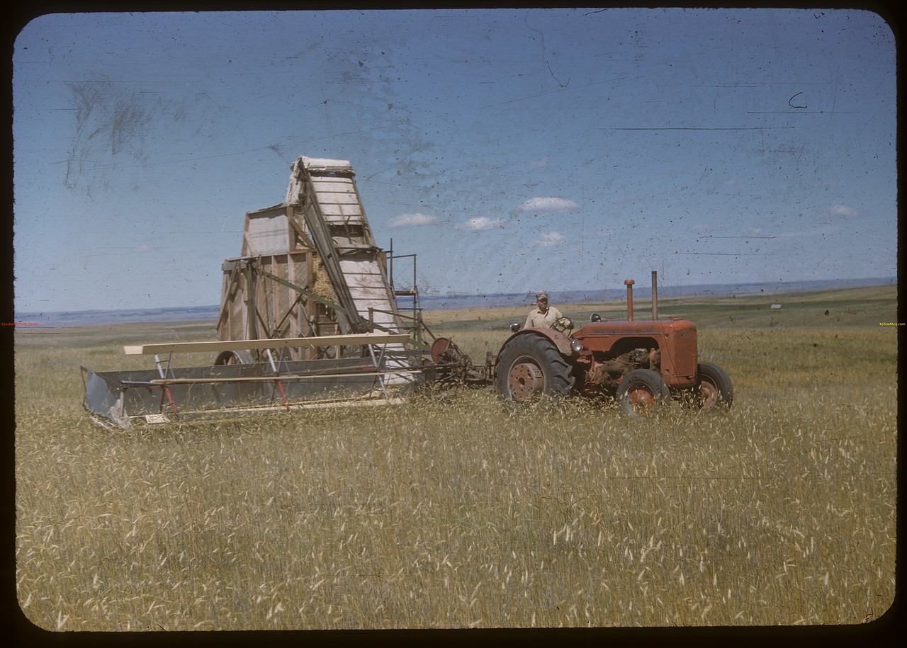Sogn Bros. barge header and stacker. Shaunavon 07/31/1948