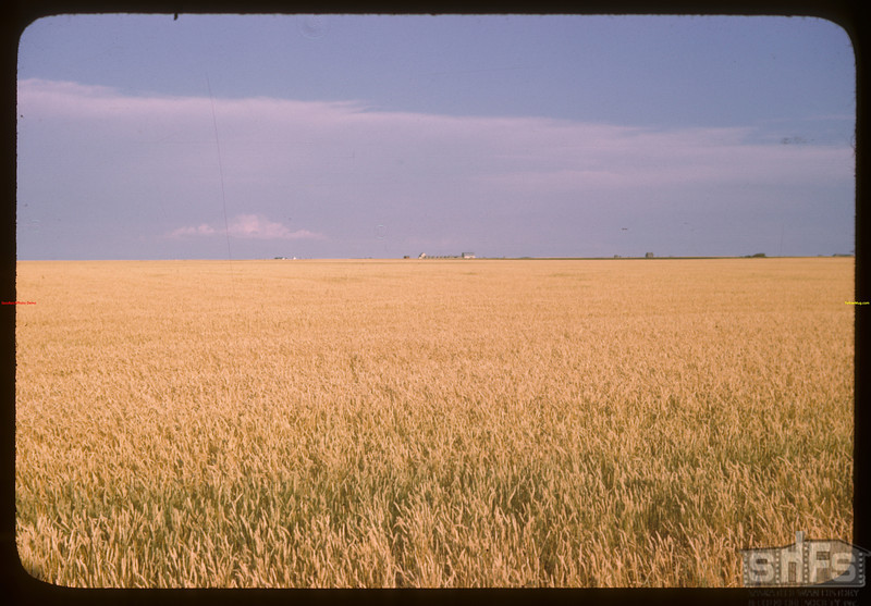 "Regina Plains ""Bread Basket of the World"" looking south from Regina.  Regina.  08/13/1946"