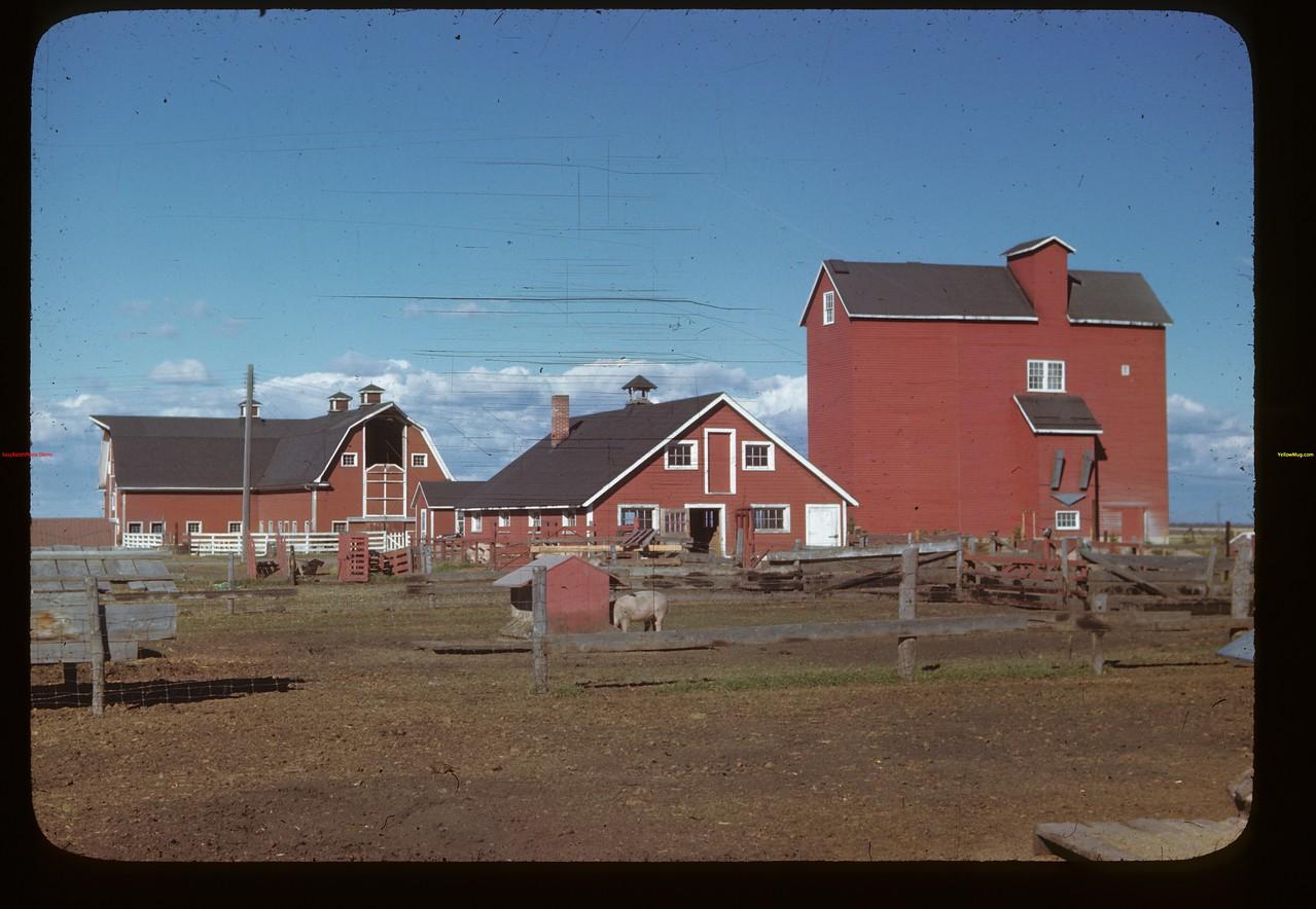Dominion Experimental Experimental Station farm buildings Melfort 09/28/1946