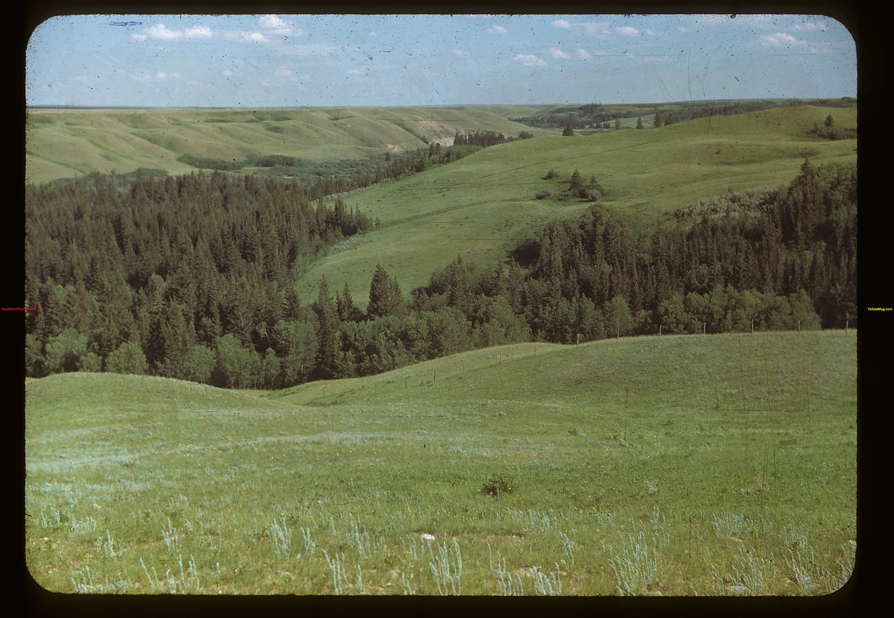 Looking south down Battle Creek from west of Old Fort Walsh	 Maple Creek	 07/04/1948
