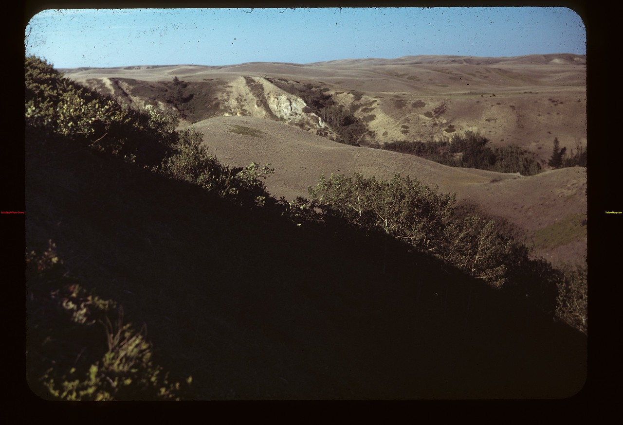 Looking N. E. Toward Ravine. That Runs into Chimney Coulee	 Eastend	 08/14/1949