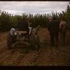 Irwin Studers tractor weeder Lac Pelletier 06/20/1947