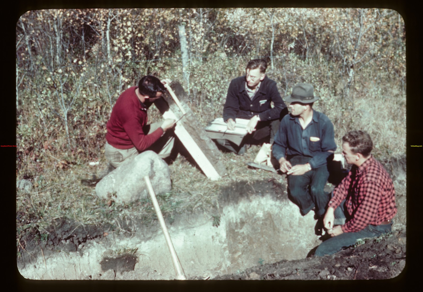 Data on soil profile Loon River 09/23/1944