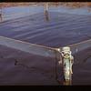 Trap net spawning pickerel Loon Lake 04/30/1944