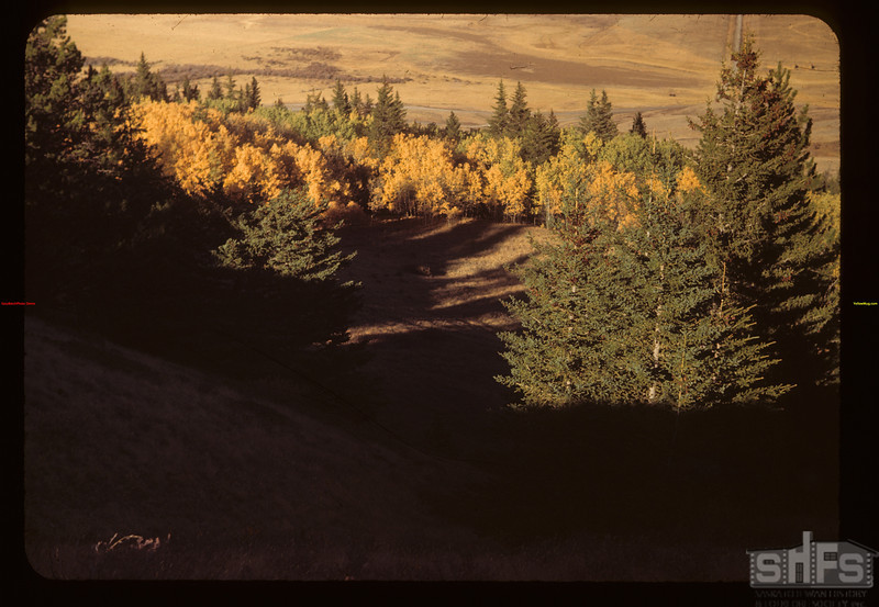 Above the Maple Creek - Govenlock Valley.	 Maple Creek	 09/27/1949