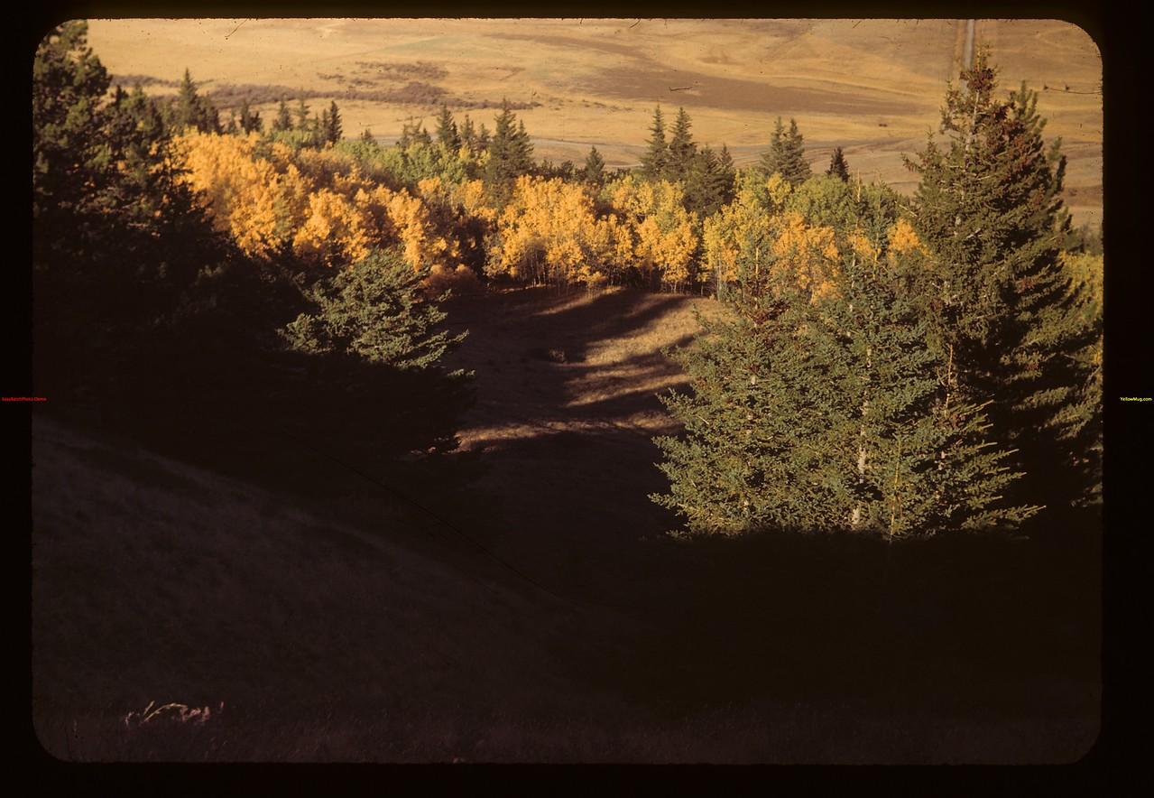 Above the Maple Creek - Govenlock Valley. Maple Creek 09/27/1949