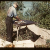 "Vic Anderson from Bluebell ""Gutting"" fish - Island Lake	 Goodsoil	 08/18/1945"