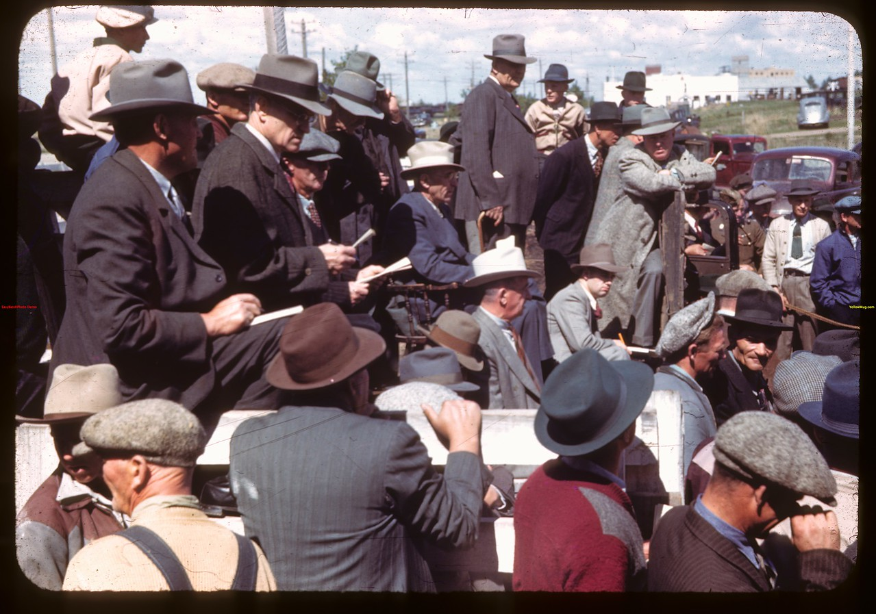 Bull show and sale.  North Battleford.  05/25/1944