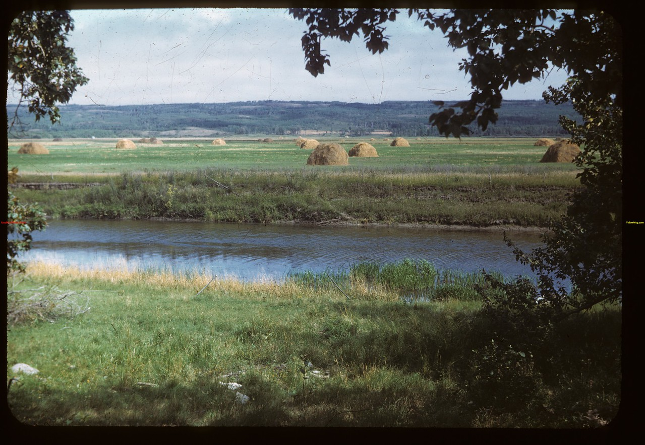Assiniboine River	 MacNutt	 09/02/1949