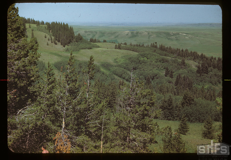 Above Boyd's ranch - Cypress Hills	 Maple Creek	 07/04/1948