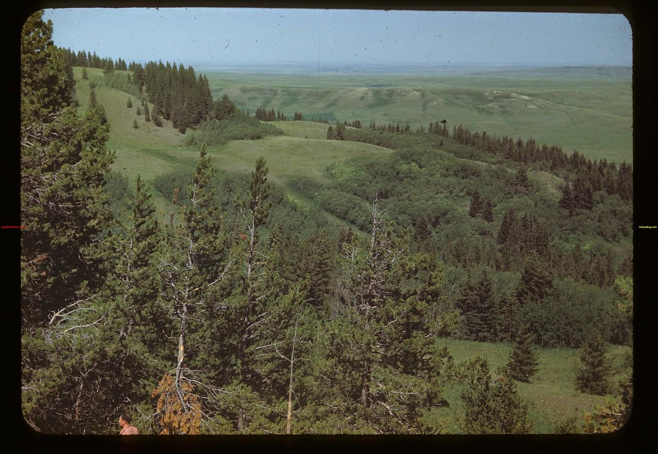 Above Boyd's ranch - Cypress Hills Maple Creek 07/04/1948