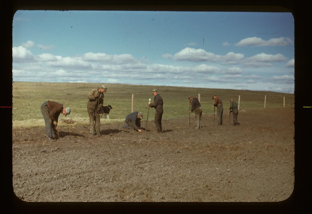Matador Co-op Farm. Boys after dinner Matador 05/15/1948