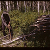 Indian Wood cutter friend of Chas. Trottier	 Loon Lake	 08/17/1945
