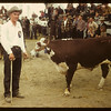 Donald Schwindt and Reserve Champion calf	 Consul	 05/31/1949