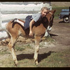 Ann Noland climbing on colt.	 Eastend	 06/12/1949