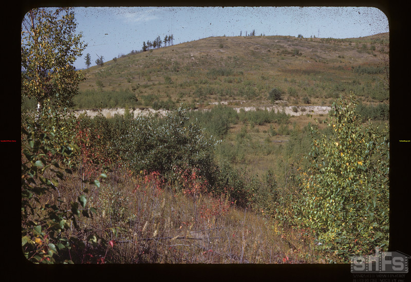 Ry Grade S. W. Need for Reforestation Loon Lake 09/05/1944