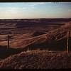 Stone ridges west of Stone Pile Climax 08/19/1956