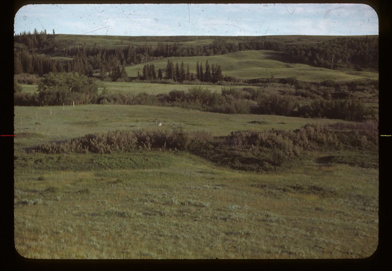 Wolfers firing across dry ravine - this way to Cypress Hills Massacre Maple Creek 07/04/1948