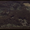 Aerial view of woodland north of PA..  Prince Albert.  06/21/1946