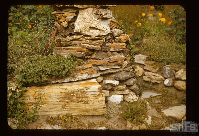 Petrified Wood Geo Bean Garden Eastend 09/10/1941