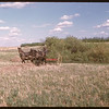 Gilbert Proulx with mules racking Russion Thistle..  Prudhomme.  06/07/1947