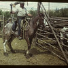 Fat Stock Show & Sale - Fred Jackson on Caton mare. Eastend. 06/01/1949