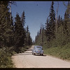 Road to Waskesiu from gate house.  Waskesiu.  06/18/1946