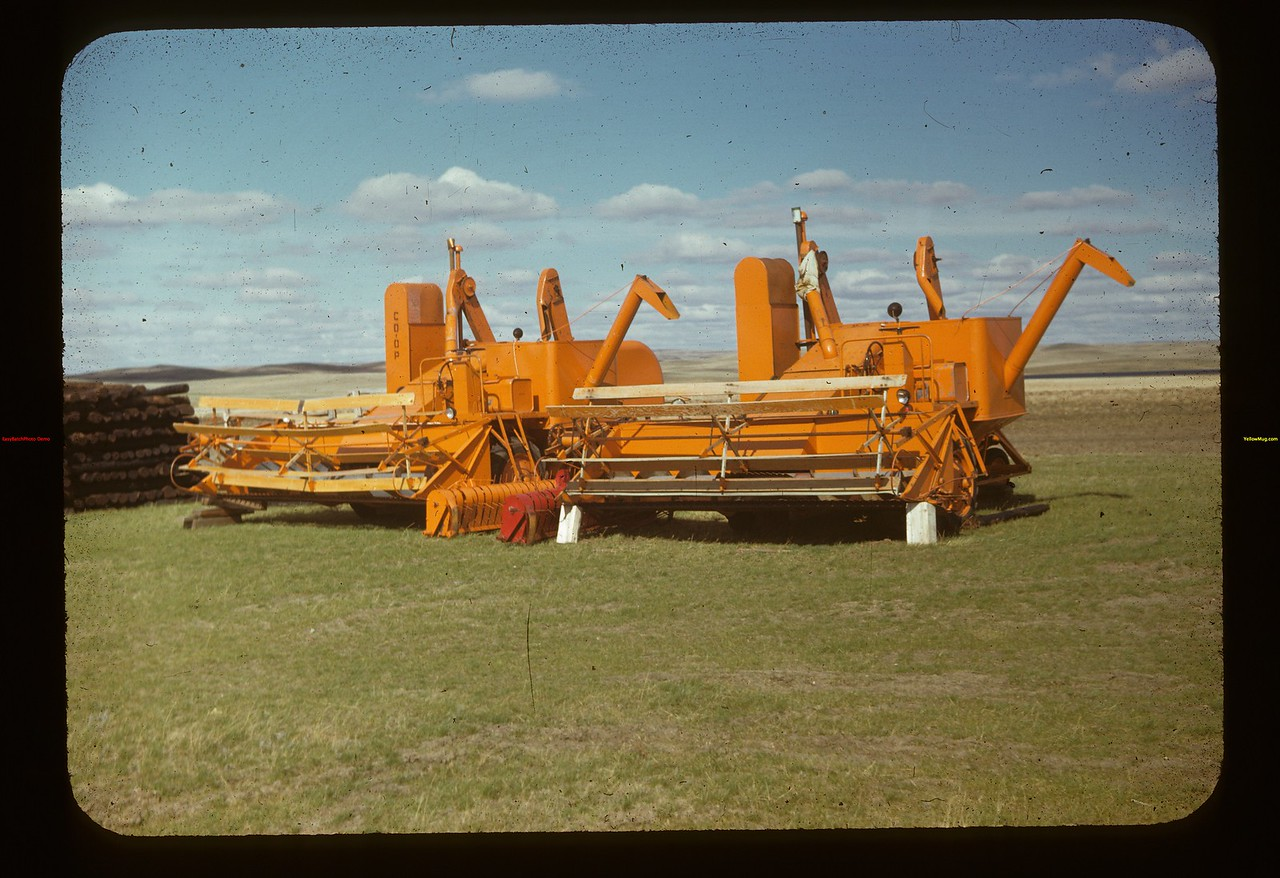 Co-op Harvester combines Matador Co-op Farm Matador 05/15/1948