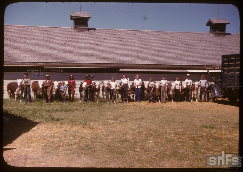 Drinkwater Jr. Calf Club - Moose Jaw Fair.	 Moose Jaw	 07/02/1947