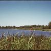 Larson's lake..  Norquay.  09/01/1946