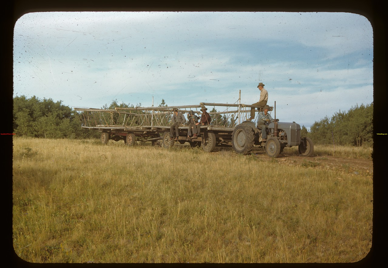 W.J. White of Maple Creek and crew going for hay. Cypress Hills. 08/27/1948
