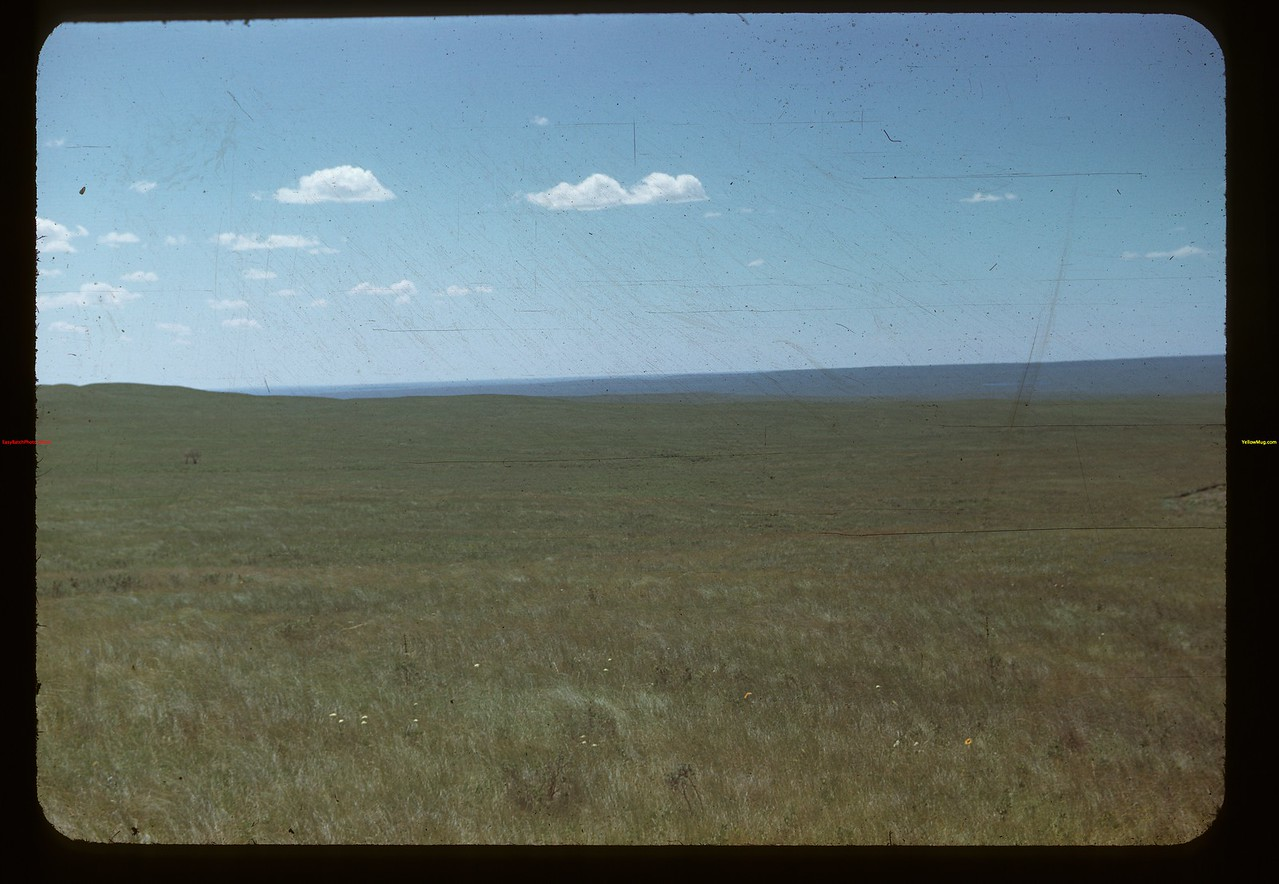 Upland prairies in the Cypress Hills Maple Creek 07/04/1948