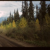 Road thru Forest Reserve to Hudson Bay	 Hudson Bay	 09/21/1949
