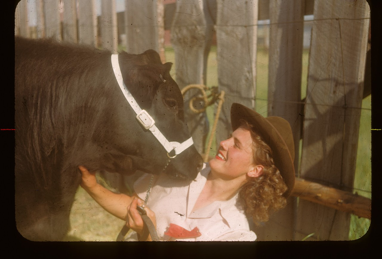 Affectionate calf and Nora Way.	 Mankota	 06/08/1948