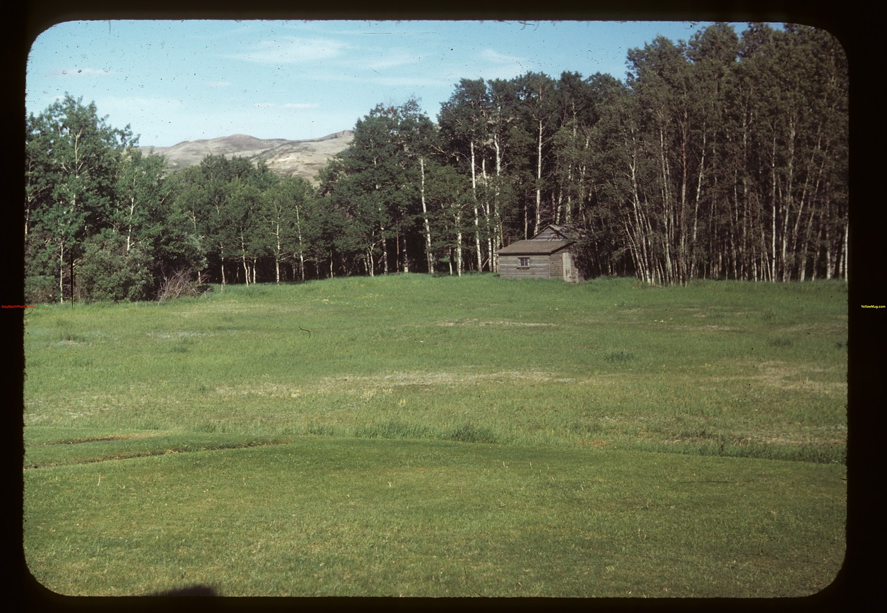 Roy Stewart's from Lawn. Looking East Eastend 06/12/1949