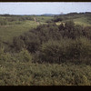 Saskatoon Settlement Trail near Walls. Looking East. Loon Lake 08/19/1945