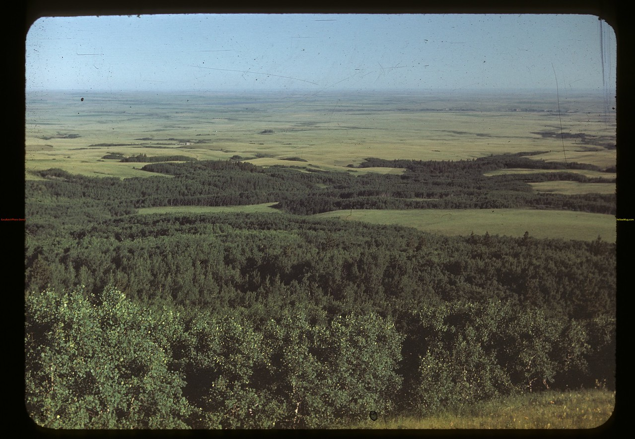View of maple Creek from Cypress Hills - Old Baldy. Cypress Hills. 07/04/1948