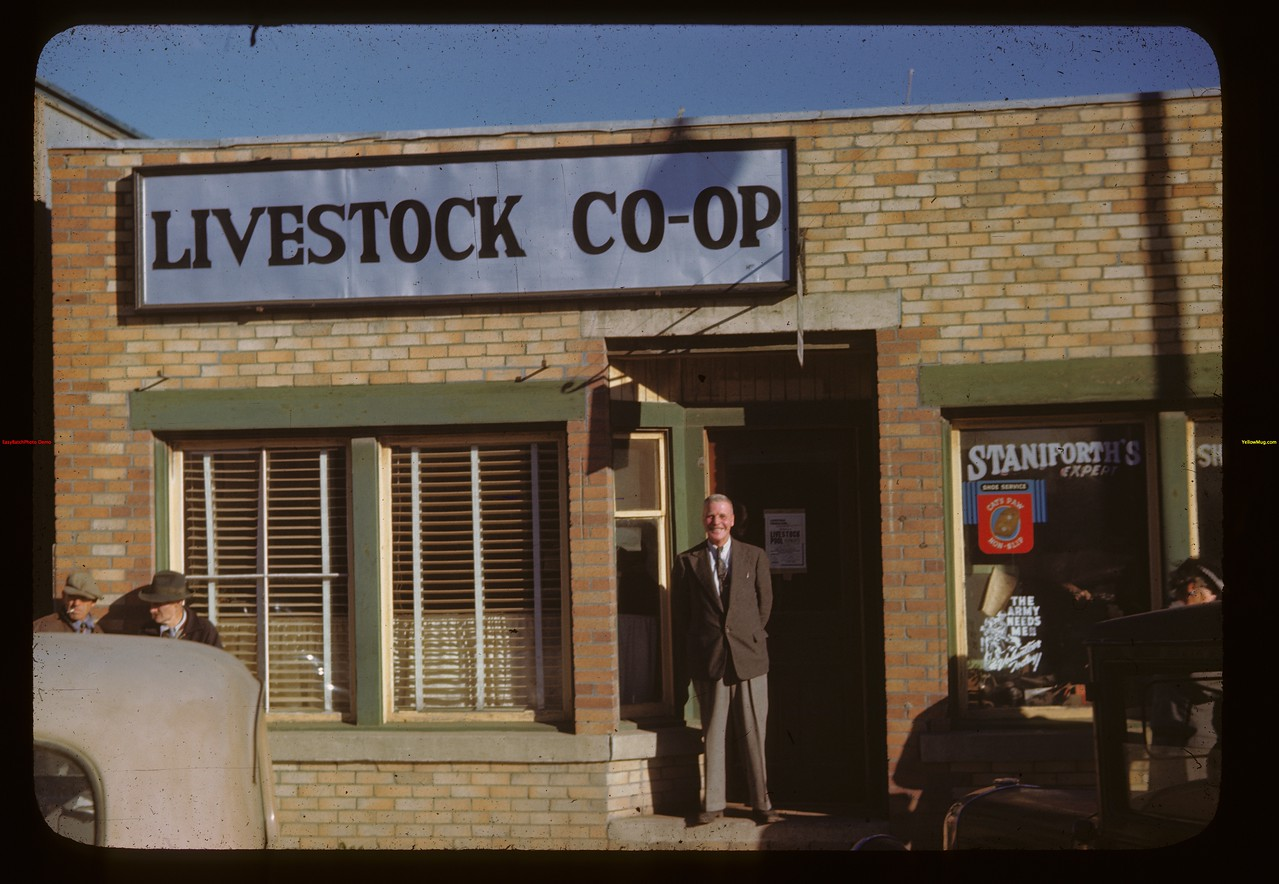 Livestock Co-op office - Edwards in door.	 Melfort	 09/28/1946