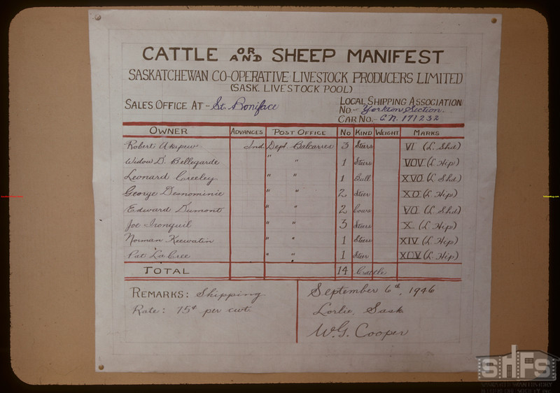 Canadian Livestock Cooperative cattle and sheep manifest - Lorlie to St. Boniface.  Regina.  03/25/1948