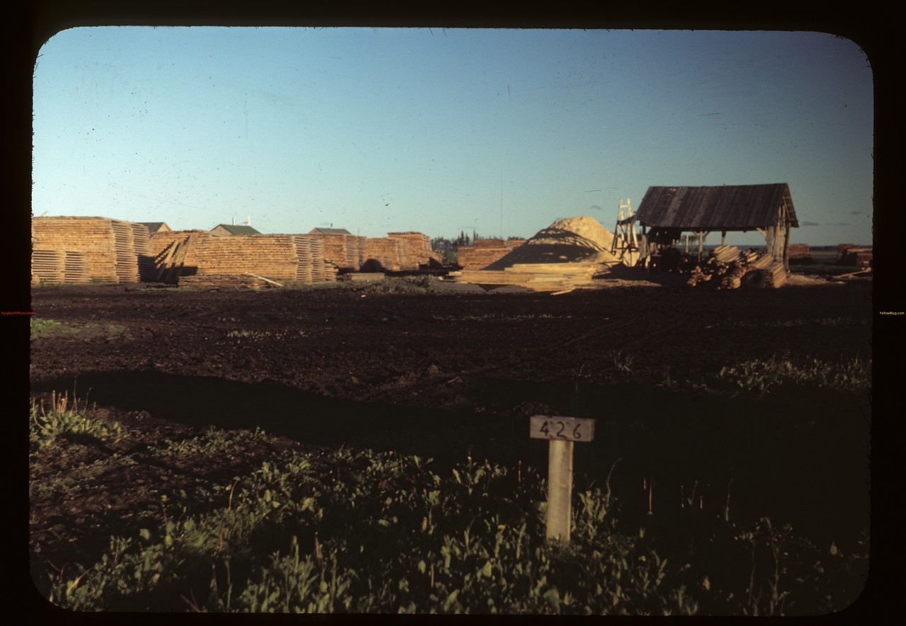 Planer - Carrot River co-op farm. 07/18/1949