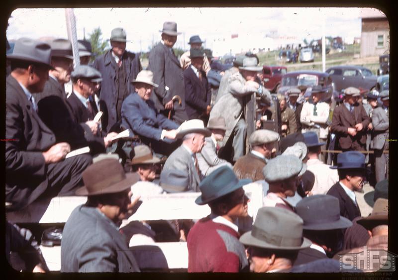 J.W. Durno of Calgary auctioneering Bulls.  North Battleford.  05/25/1944