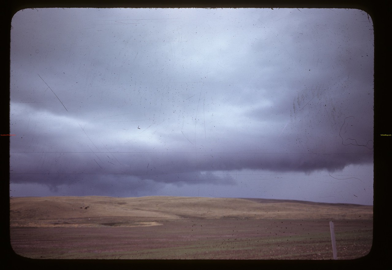 Storm Val Marie Cadillac 06/06/1946