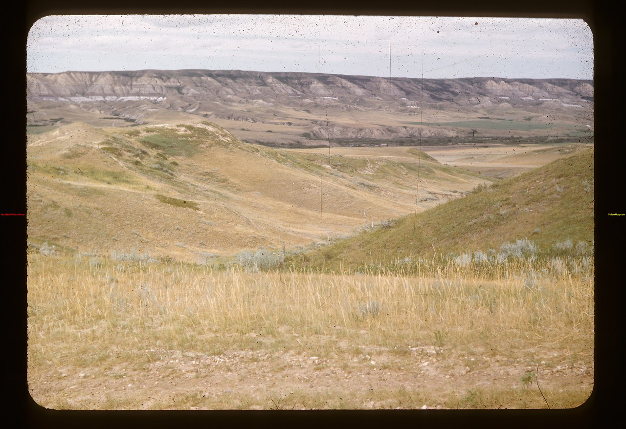 Up south side out of White Mud valley. Knollys 07/15/1954
