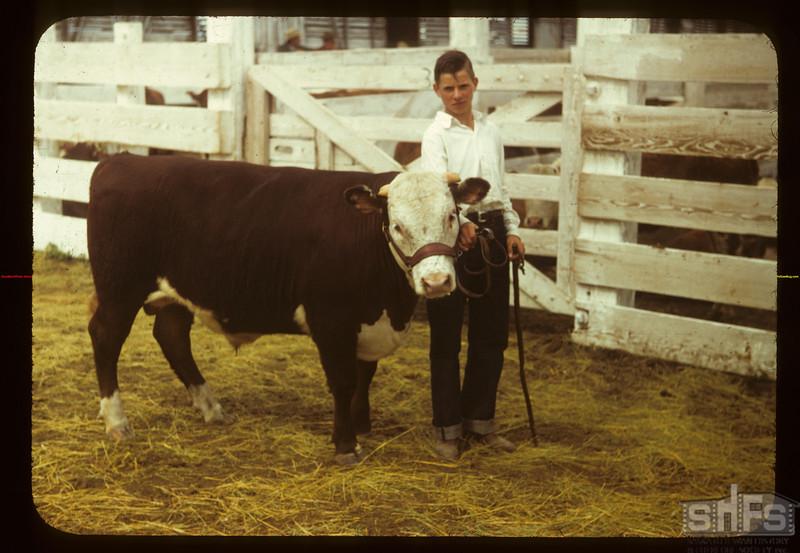 Flloyd Pelkey with the Grand Champion calf Consul 05/31/1949