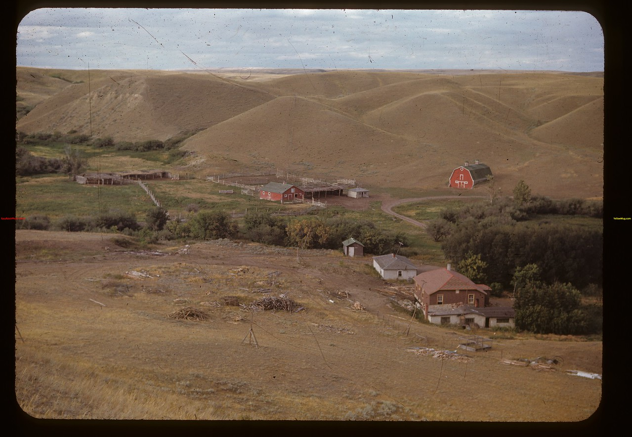 A. F. (Sandy) Gilchrist ranch.	 Maple Creek	 08/25/1948