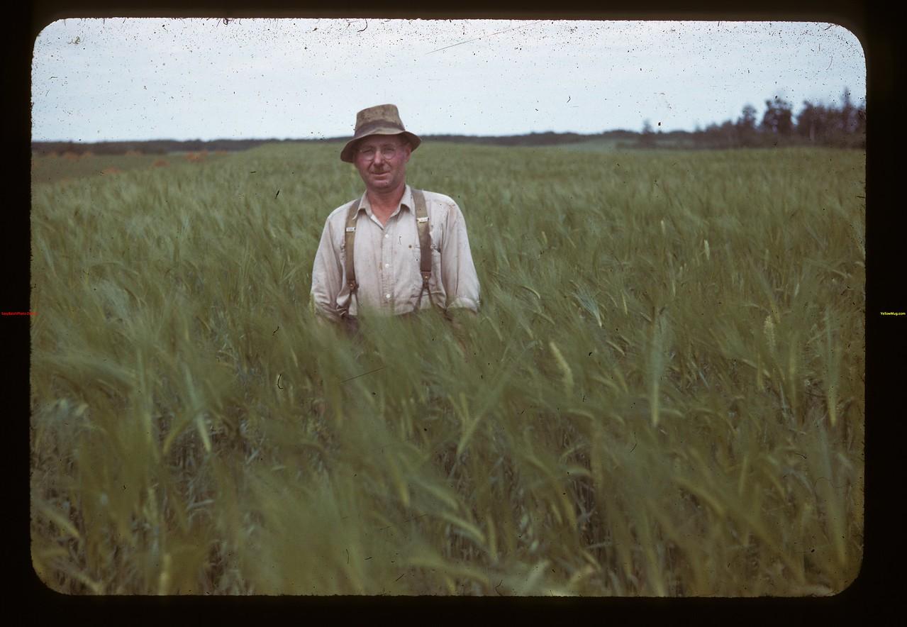 Mr. Gust Miller in Medstead barley Medstead 07/29/1944