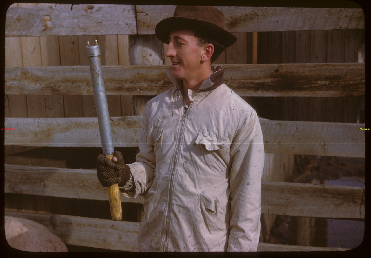 Bert Beswick with electric persuader..  North Battleford.  10/07/1946